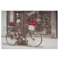 Wandbild Kunstdruck Fahrrad Weihnachtsstern 40x60 cm Bild mit Aufhängung